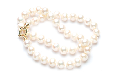 White Strand of Fresh Water Pearls with Gold Clasp